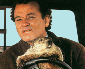 Blog Uploaded Images Big Bill In Groundhog-731047